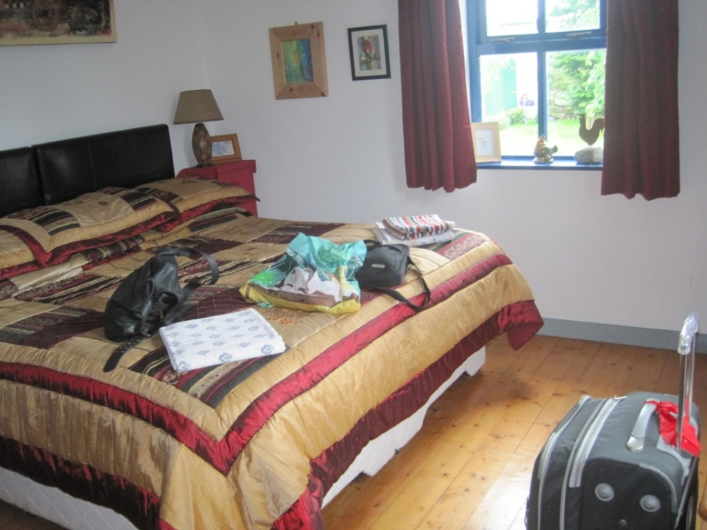 19 July 2014 Clondanagh Cottage Tulla (17)